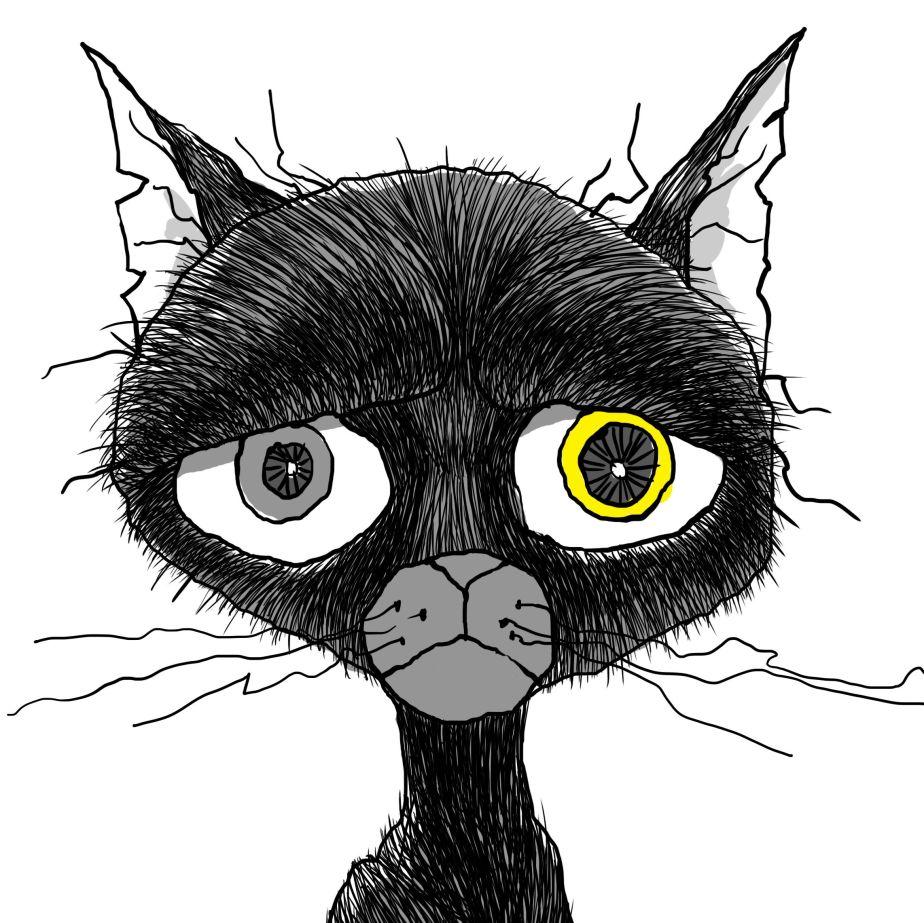 Cat Haee